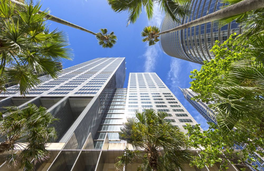 Offices For Lease In Sydney Nsw Sidespace Com Au